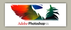 Photoshop version 8.0